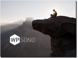 https://wpsono.com/ website