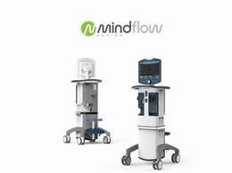 https://www.mindflowdesign.com/ website