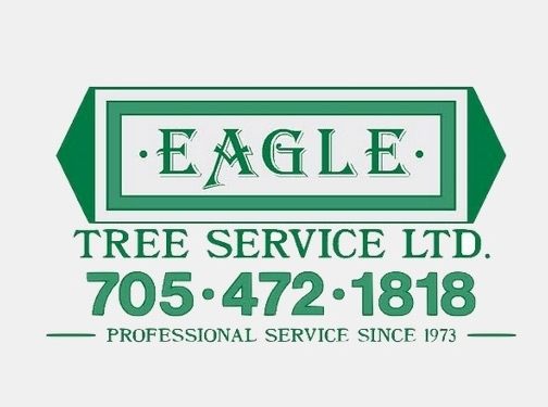 http://www.eagletreeservice.ca/ website