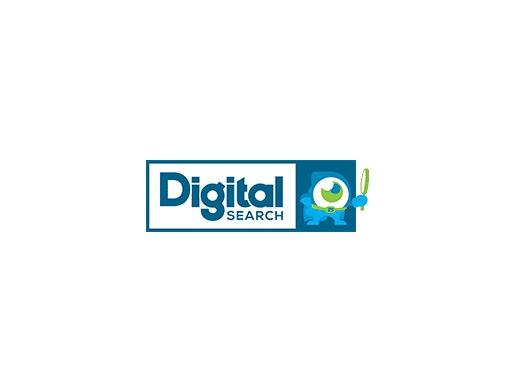 https://digitalsearchgroup.com.au/ website