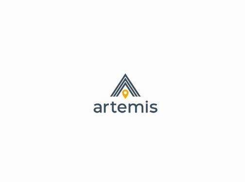 http://www.artemisinternetmarketing.com/ website