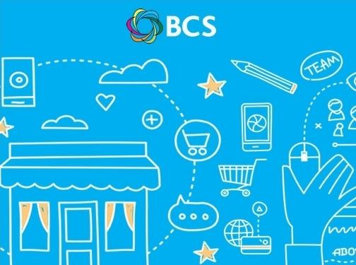 https://bcswebdesign.co.uk/ website